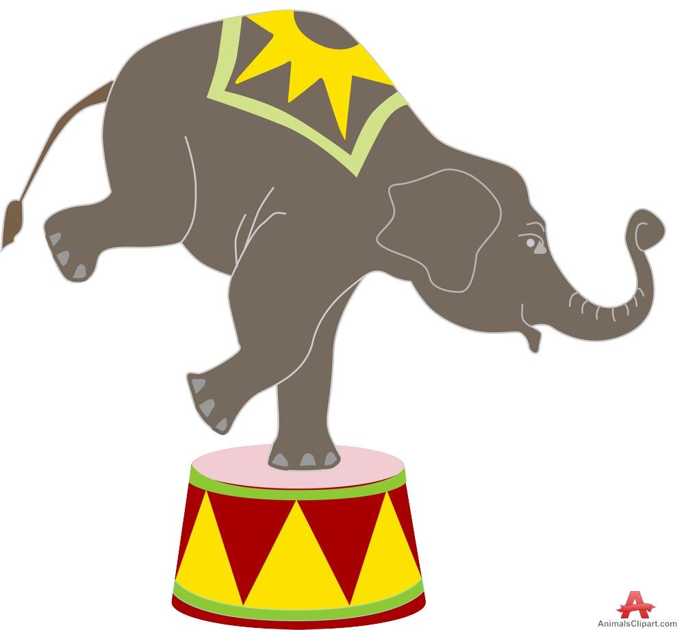 999x921 Camels Clipart Circus Elephant