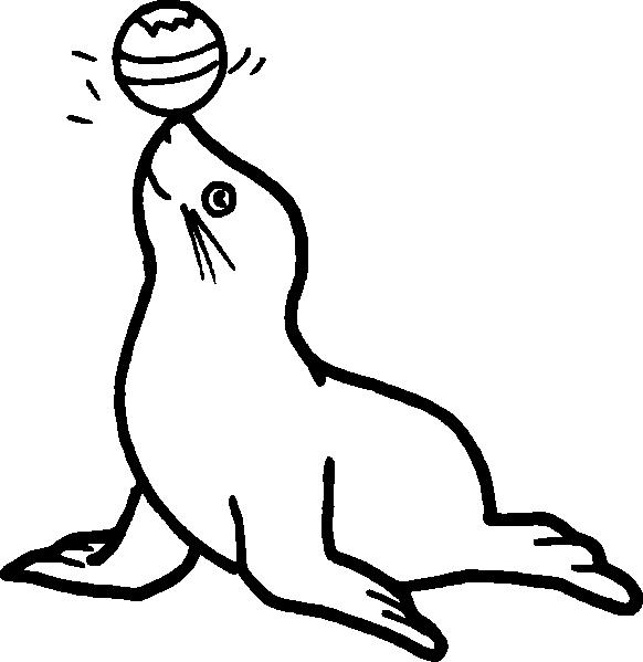 582x599 Circus Seal Clip Art