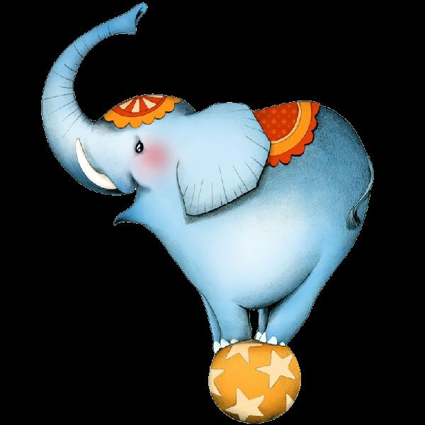 600x600 Funny Circus Elephant Balancing On Ball Elephants