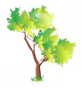 281x300 Street Tree Clip Art Cliparts
