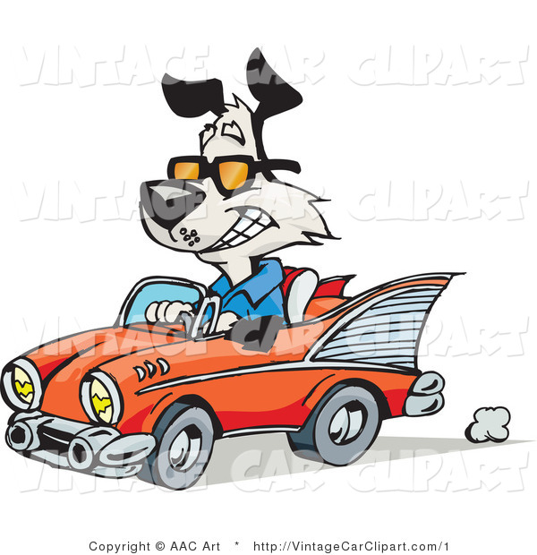 600x620 Vector Clipart Of A Happy Dog Driving A Red Vintage Convertible