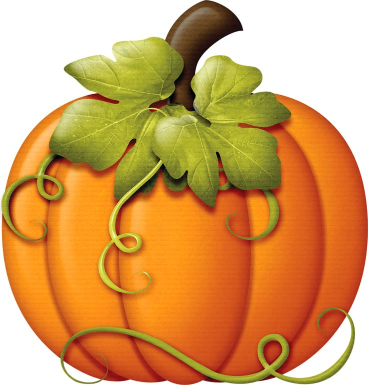 736x769 Pie Clipart Harvest Pumpkin