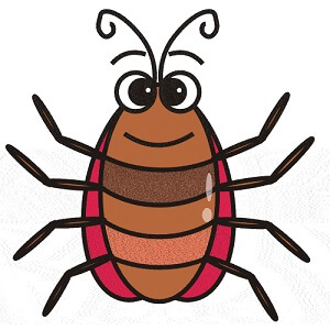 300x300 Facts Top 20 Cockroach Facts