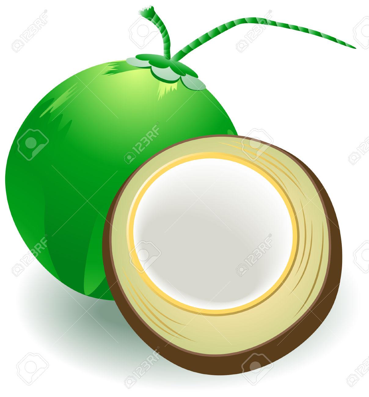 1208x1300 Coconut Clipart Coconut Fruit