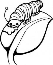 180x218 Worm Clip Art, Vector Worm