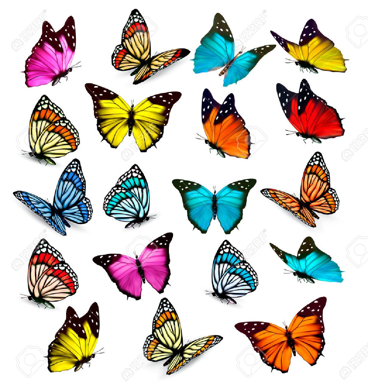 1230x1300 Big Collection Of Colorful Butterflies. Vector Royalty Free
