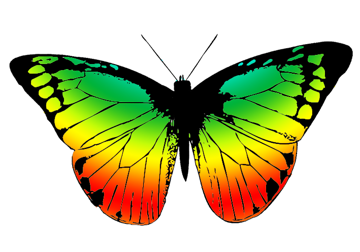 709x496 Butterfly Clipart