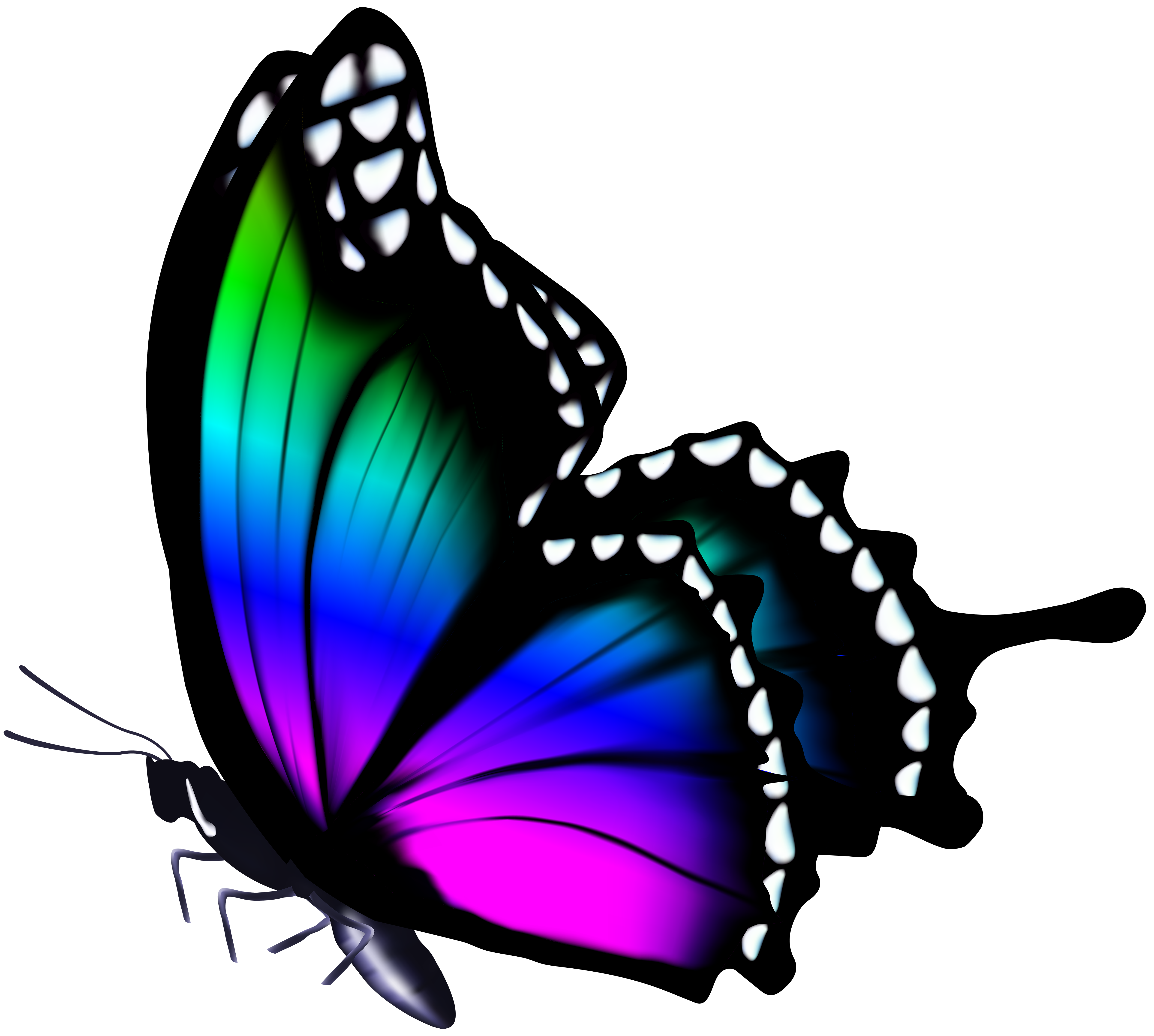 5000x4488 Colorful Butterfly Png Clip Art Imageu200b Gallery Yopriceville