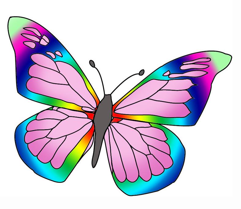 787x685 Colorful Butterflies Clipart Clipartfox 3
