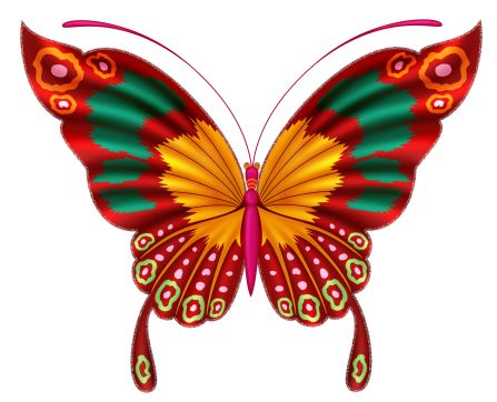447x362 Colorful Clipart Colorful Butterfly