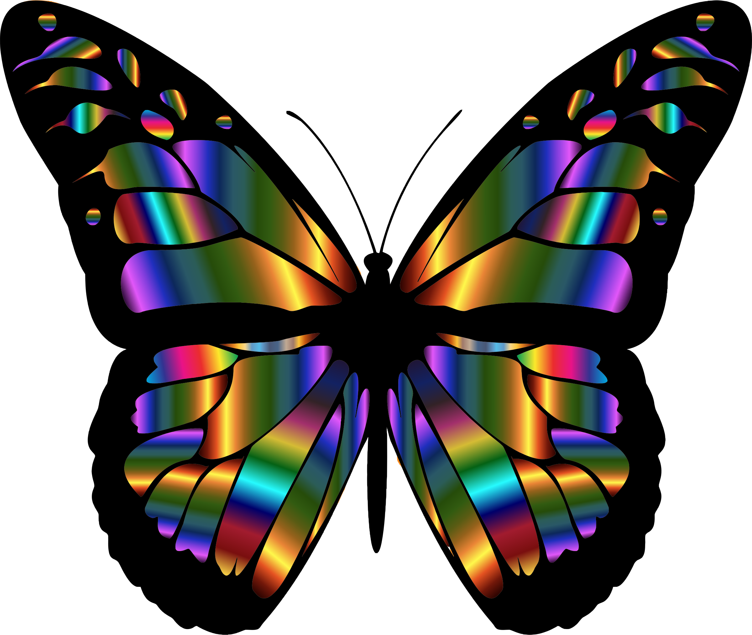 2400x2028 Iridescent Monarch Butterfly By @gdj, A Colorful Iridescent