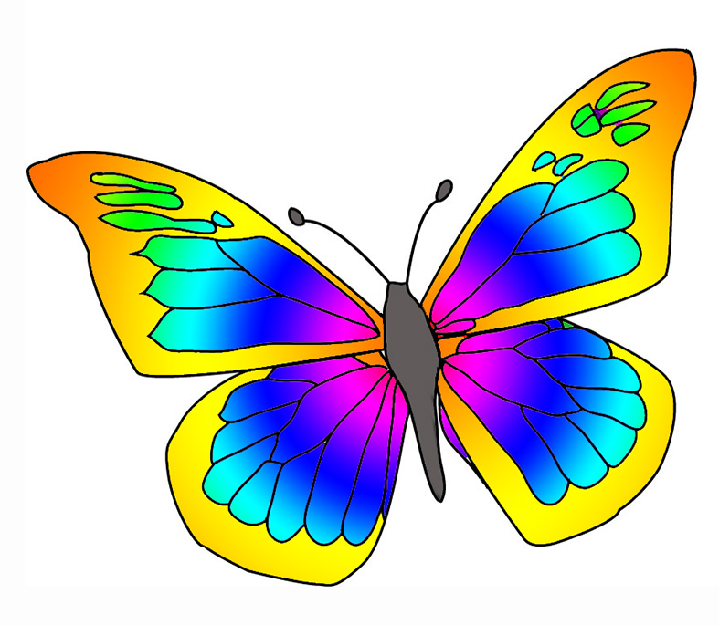 787x685 Pice Clipart Colorful Butterfly