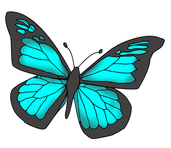 591x514 Turquoise Clipart Beautiful Butterfly