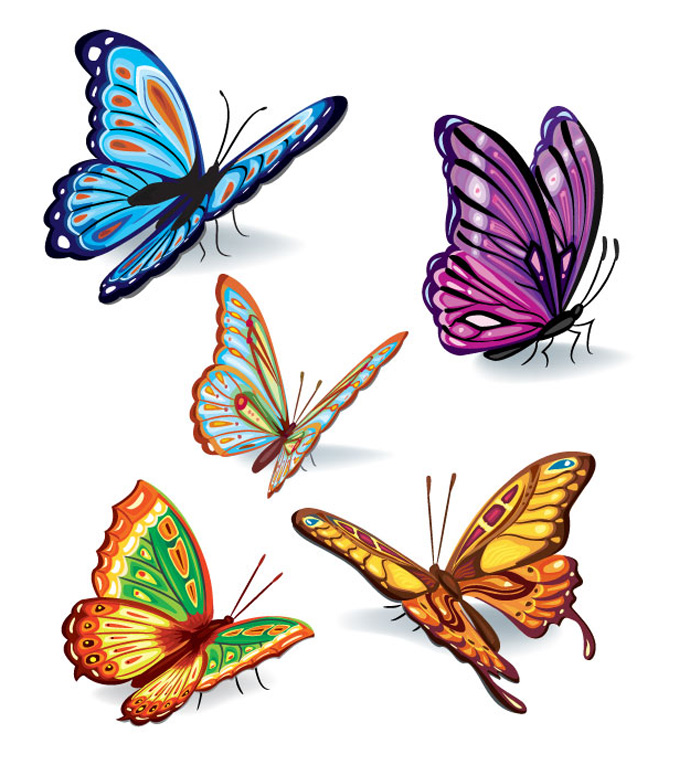 690x765 Paintings Of Butterflies Lovely Colorful Butterflies Color