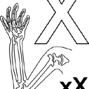 300x300 Xylophone And X Ray For Learning Letter X Coloring Page Bulk Color