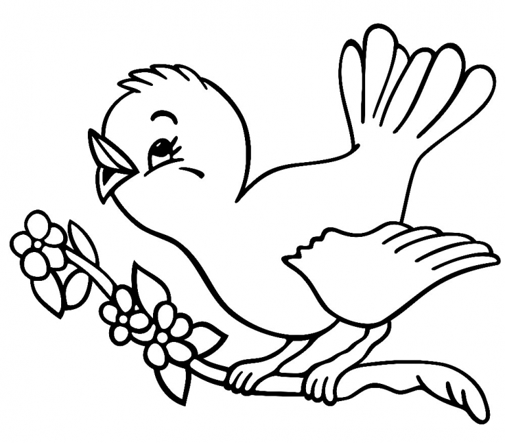 736x645 Download Coloring Pages For 3 Year Olds