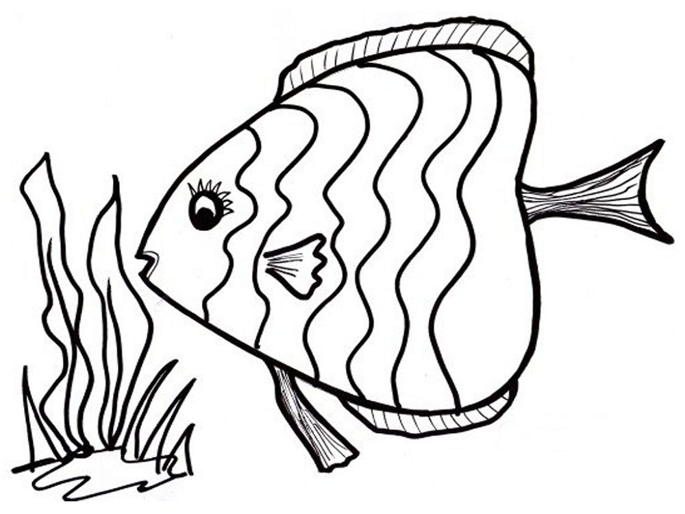 1000x750 Fish Coloring Page 2016 Printable Activity Shelter