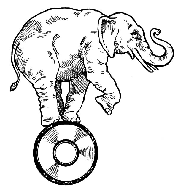 600x642 Pencil Sketch Circus Elephant Coloring Pages Best Place To Color
