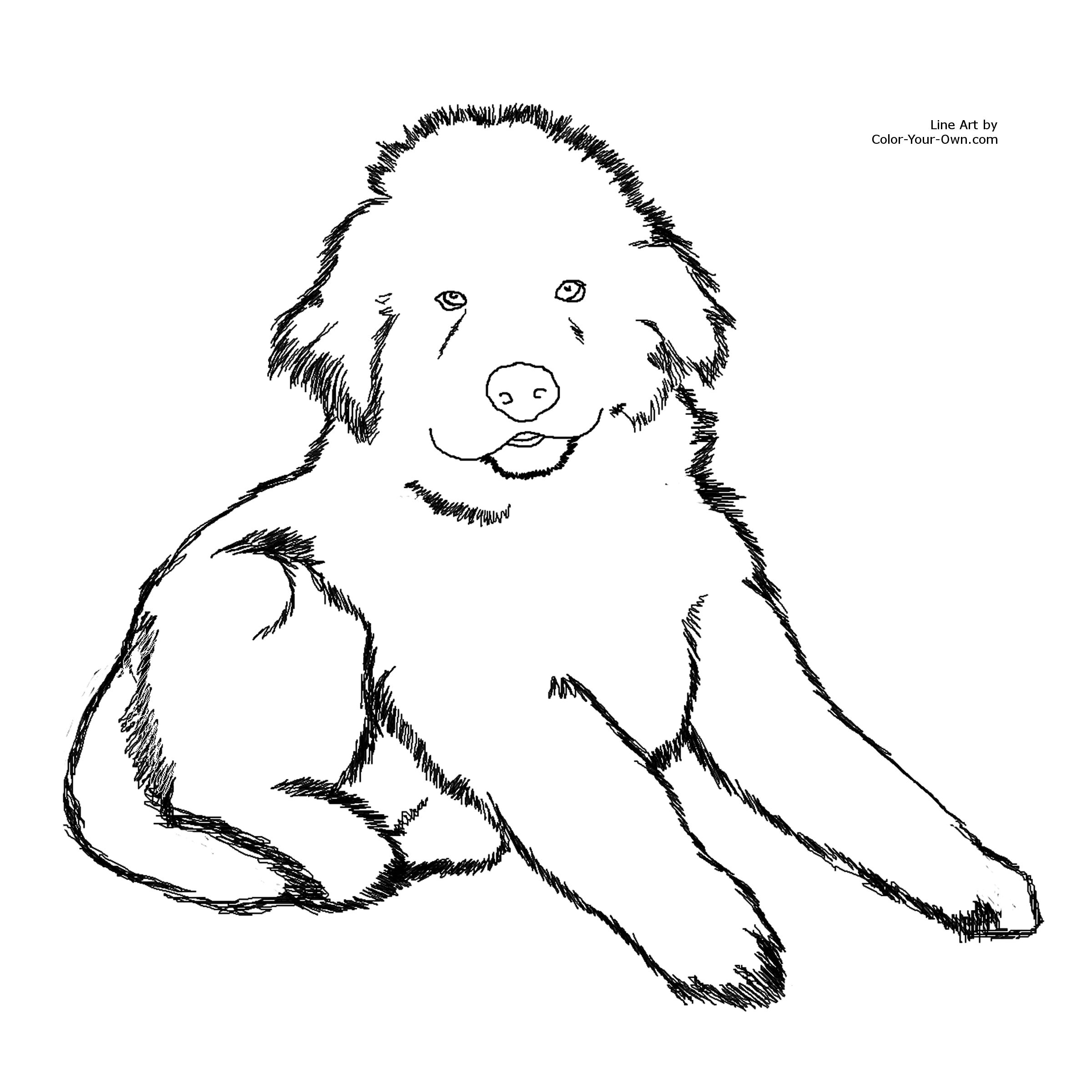 This is a picture of Printable Dog Colouring Pages with puppy