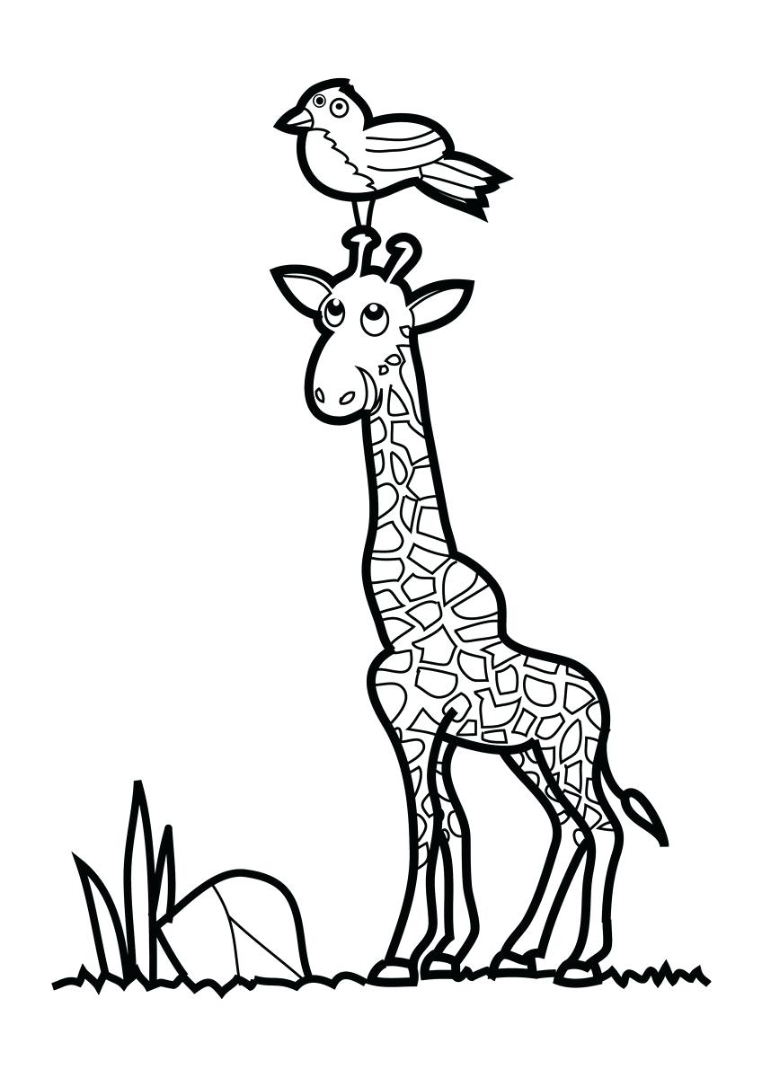 848x1200 Animals Coloring Pages Giraffe This Pin And More On For The Two