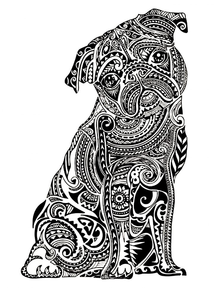728x970 Adult Coloring Pages Animals