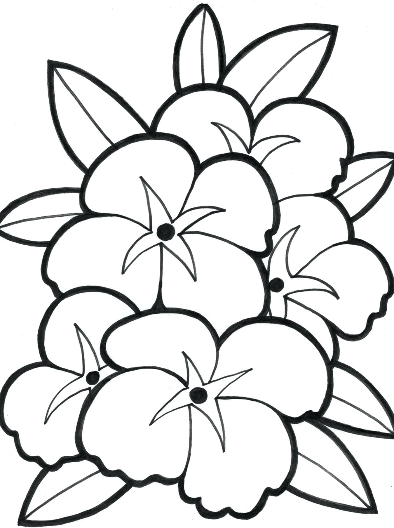 1350x1808 To Print This Free Coloring Page Adult Zen Anti Stress Pages