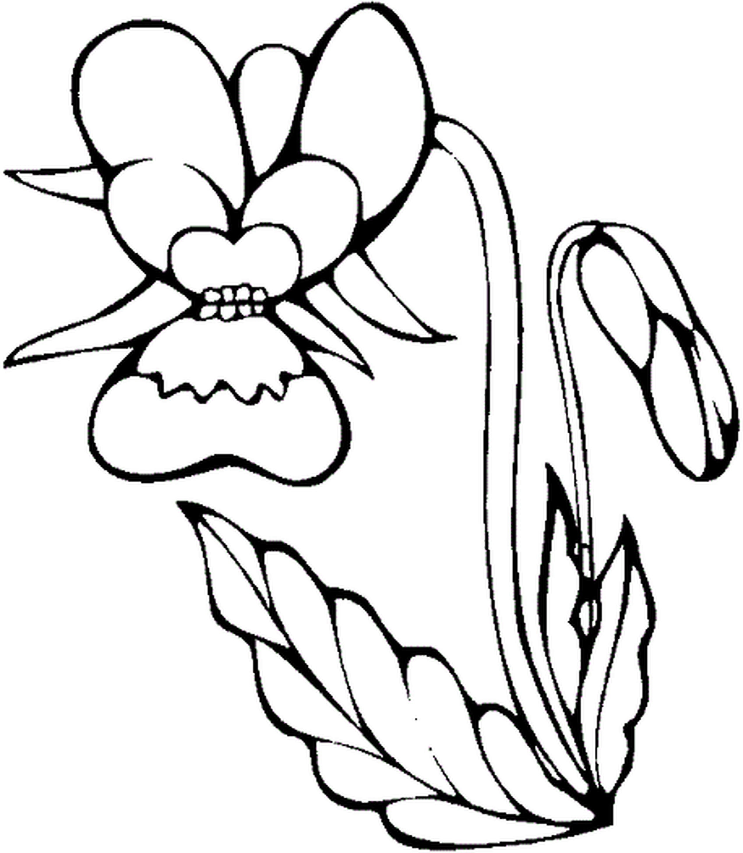 2550x2929 Coloring Pages For Girls Flowers Kids Coloring