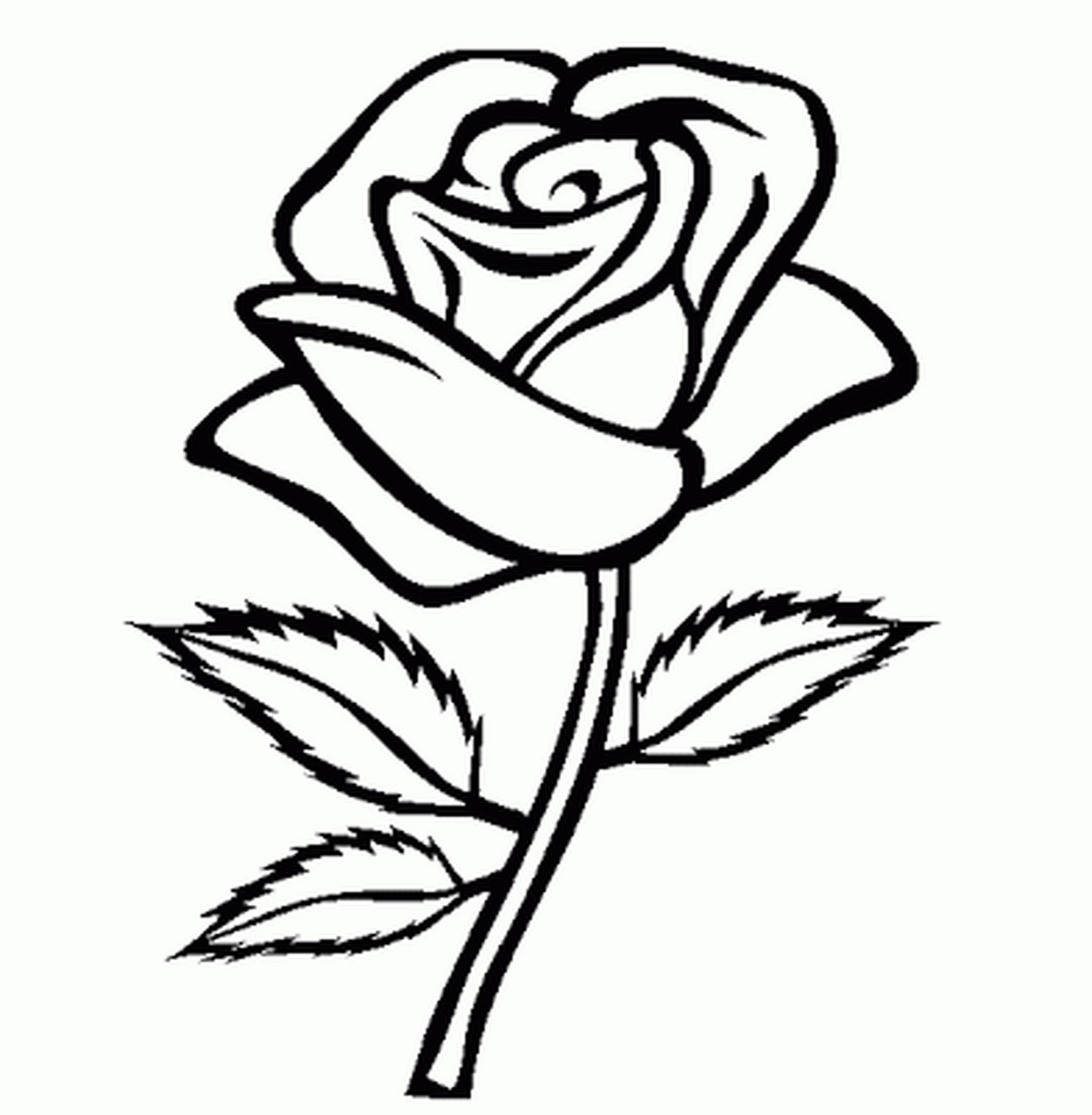 2007x2048 coloring pages for girls flowers