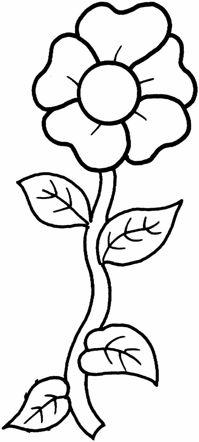 640x1417 Printable Coloring Pages Flowers New 25 Unique Flower Coloring