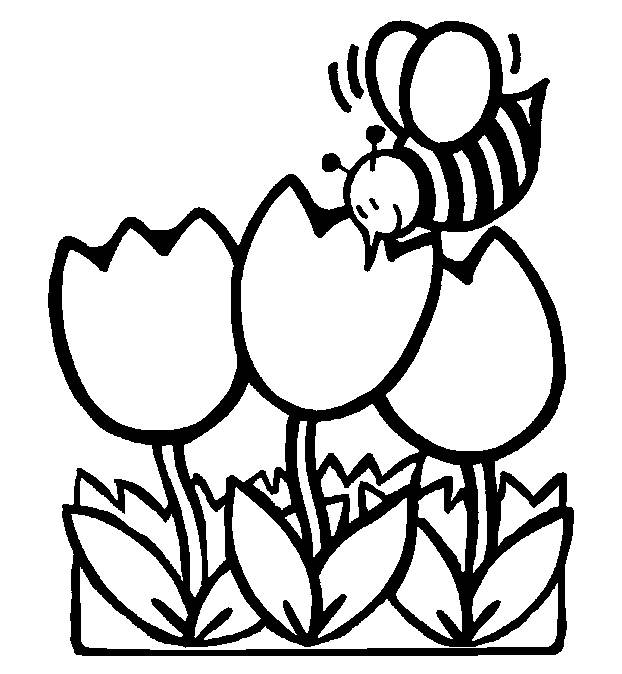 622x674 Spring Coloring Pages Printable Ideas Murderthestout