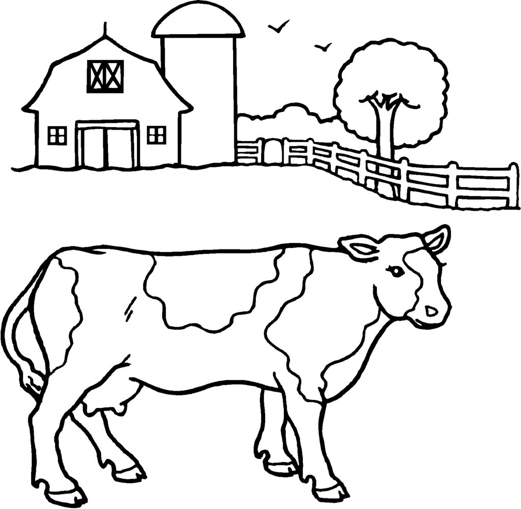 1024x1002 Cow Spots Coloring Page Kids Drawing And Coloring Pages