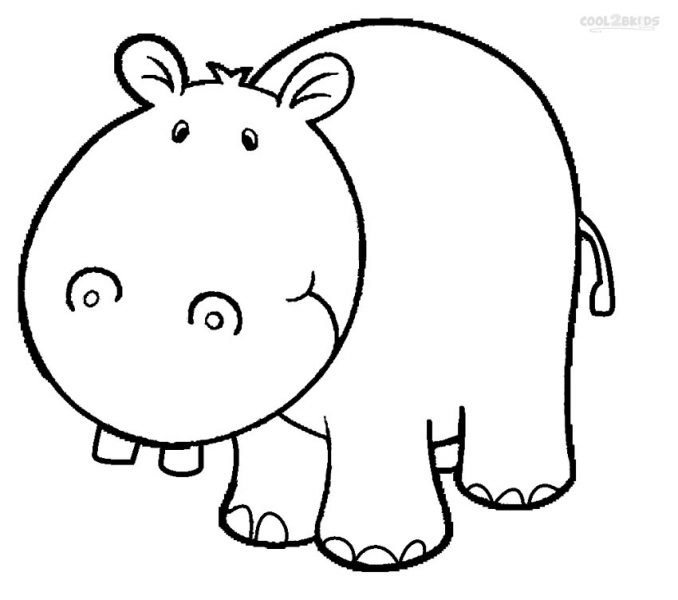 678x600 Luxury Hippopotamus Coloring Pages 53 On For Kids