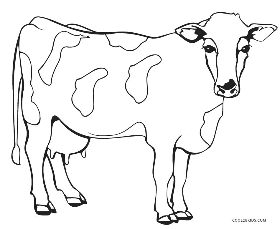 950x778 Outstanding Cow Coloring Page 88 For Your Line Drawings With Cow