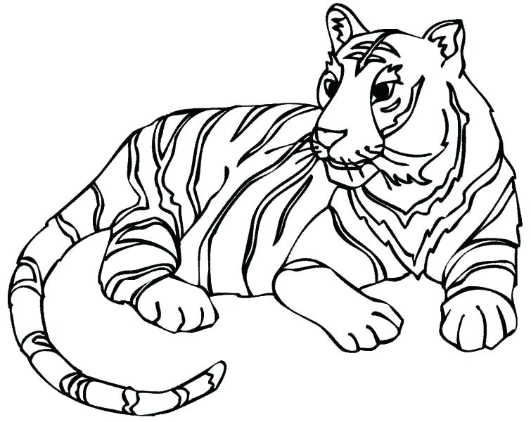 755x600 Tiger Coloring Pages Click To See Printable Version Of Standing