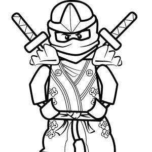300x300 Roblox Ninja 10965