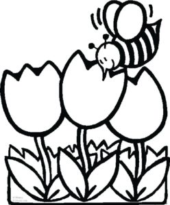 248x300 Coloring Pages Adults Coloring Page Fun