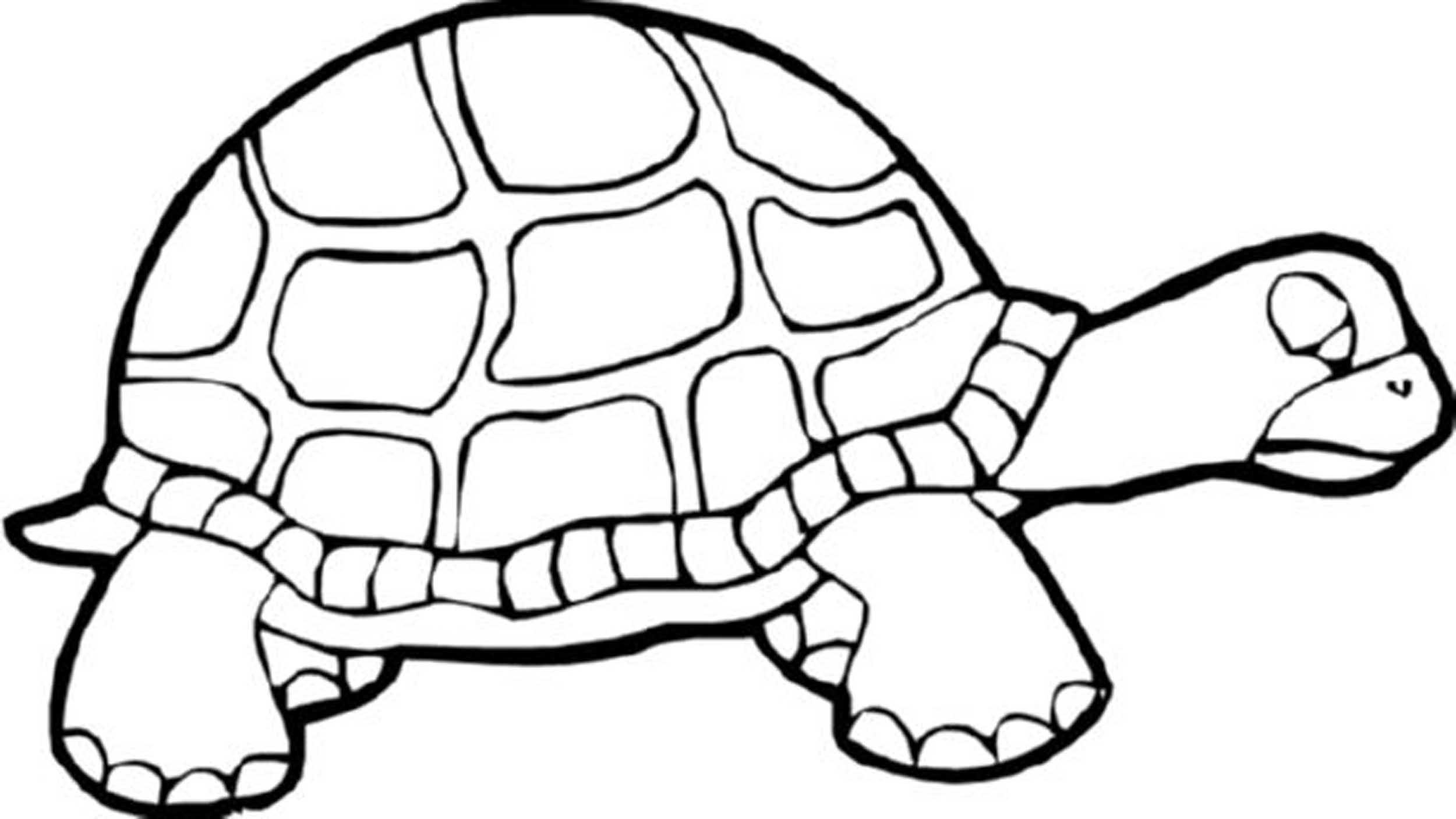 2500x1405 Ninja Turtles Coloring Page. Affordable Activities Nick Random