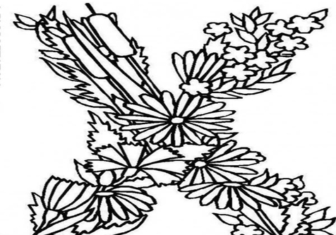 476x333 X Coloring Pages Page Image Clipart Images