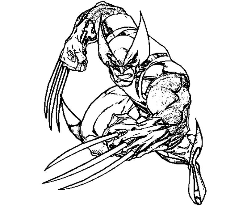 800x667 To Print Wolverine Coloring Pages 86 In Seasonal Colouring Pages