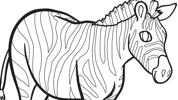 580x326 Zebra Printable Coloring Pages Strong Zebra Coloring Page Free
