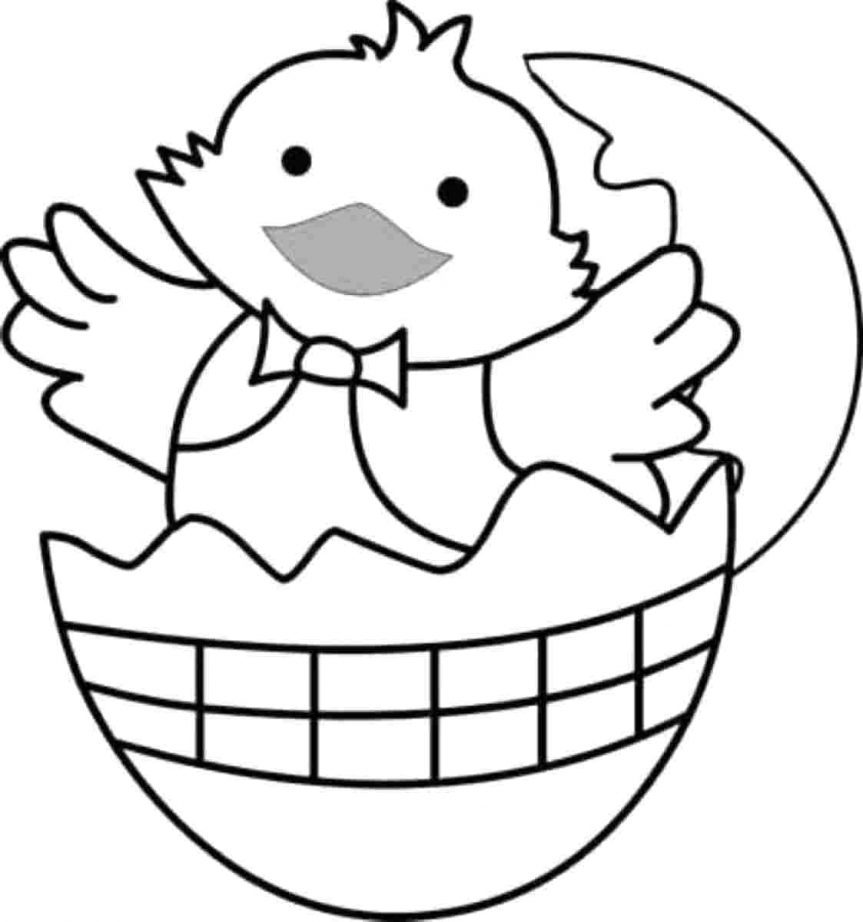 863x922 Coloring Pages Surprising Chicken Coloring. Chicken Coloring