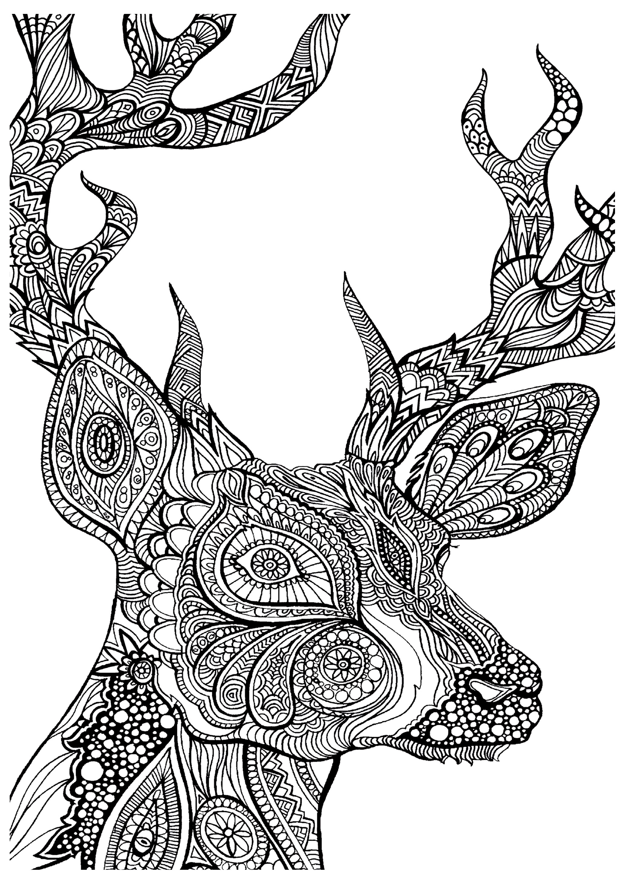 2065x2922 Printable Deer Coloring Pages Coloringstar Baby Sheets Animal