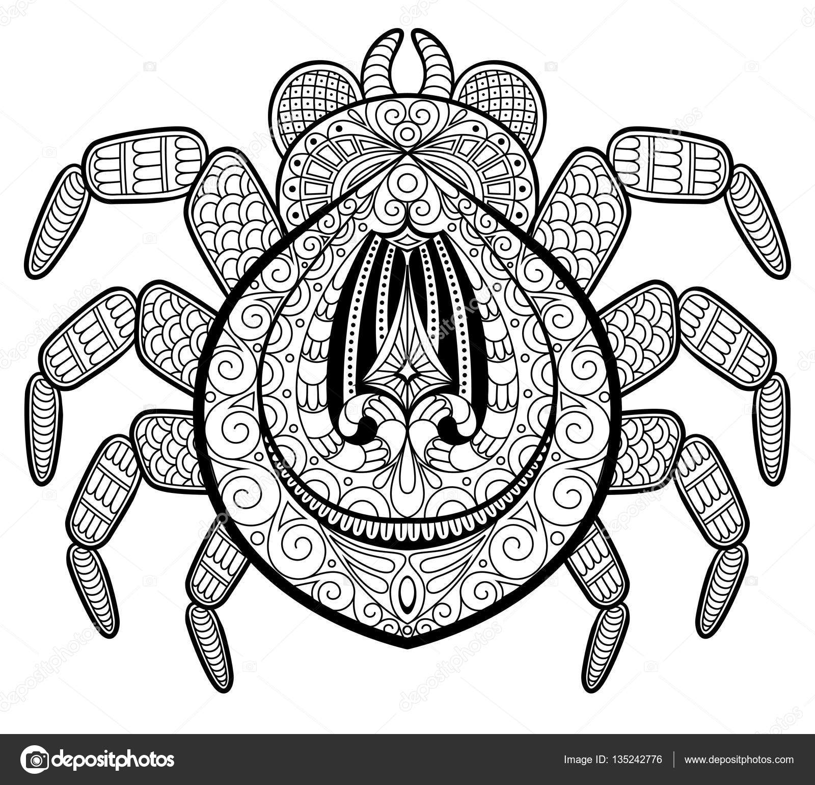 1600x1540 Spider In Zentangle Style For Tattoo. Print Or T Shirt. Adult