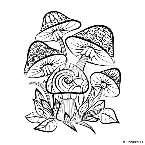 500x500 Vector Hand Drawn Doodle Outline Mushrooms. Vector Zentangle