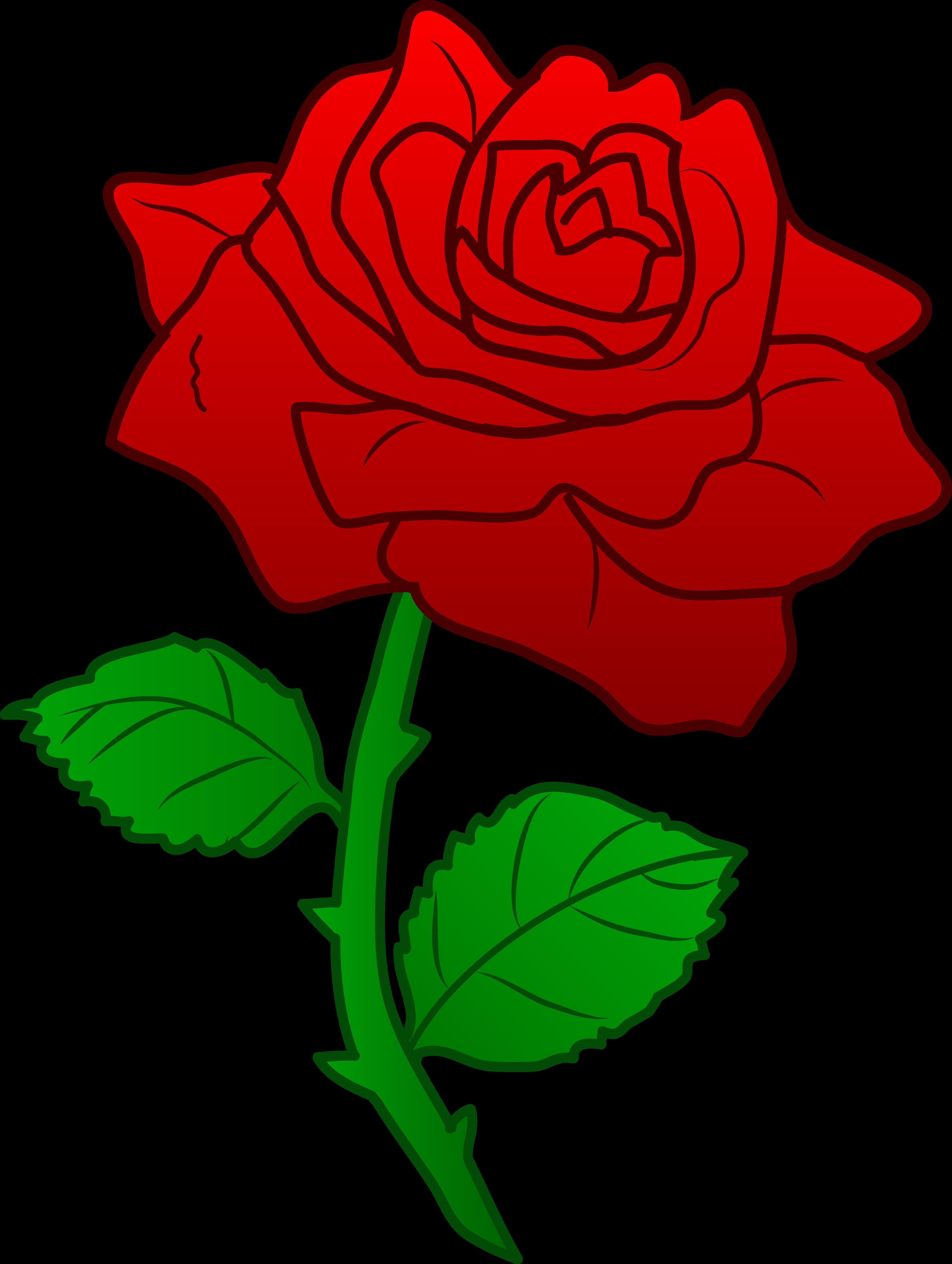 4257x5650 Rose Clipart