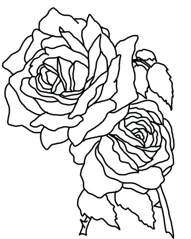 618x770 How To Draw A Heart With Rose Step By Tattoos Pop Free Compass