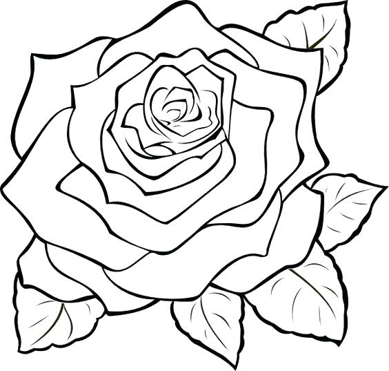 564x537 Rose Clipart Compass Rose Royalty Free Image Rose Clip Art Black