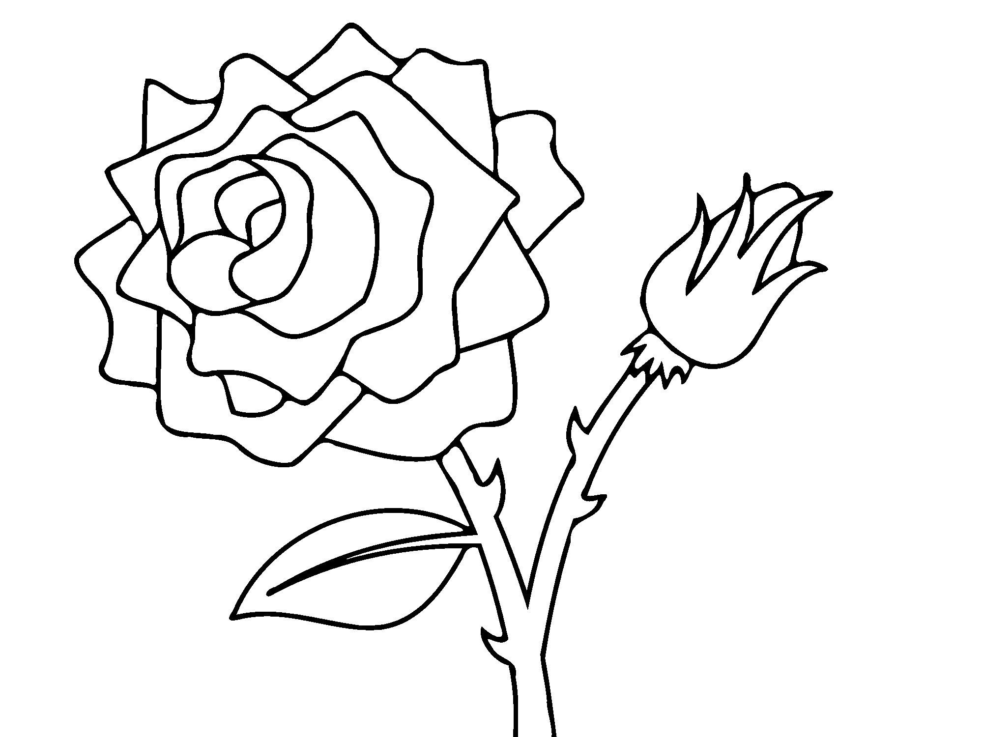 2000x1500 Rose Flower Coloring Pages