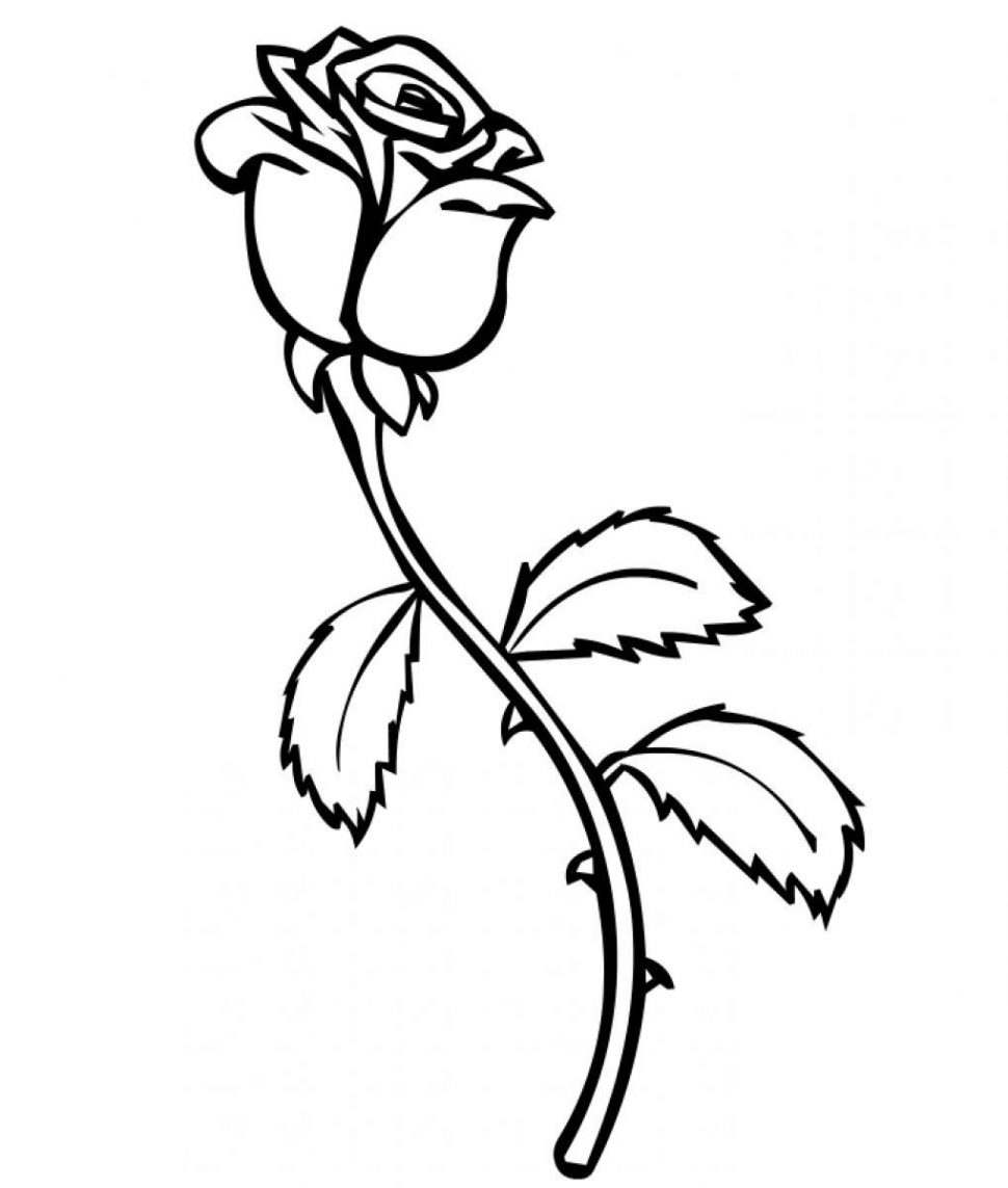 970x1143 Coloring Pages Excellent Roses Coloring Pages Compass Rose Print