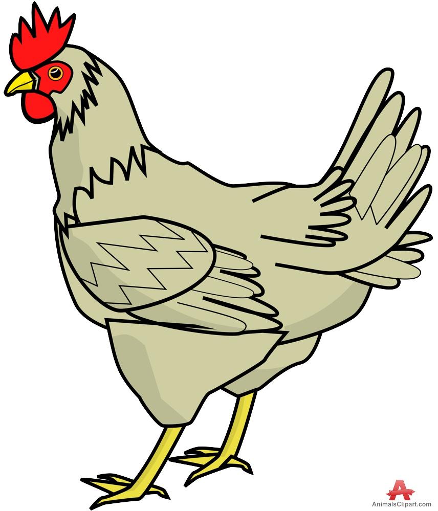 856x999 Chicken Clipart